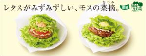モスの菜摘(なつみ)
